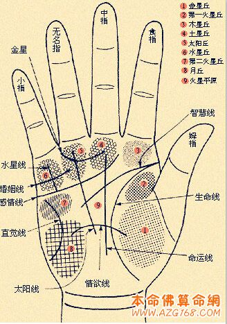 男人左手手纹算命图解  面相手相网